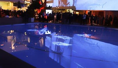 Sharks at the Beverly Hilton