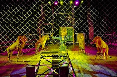 Rostov State Circus